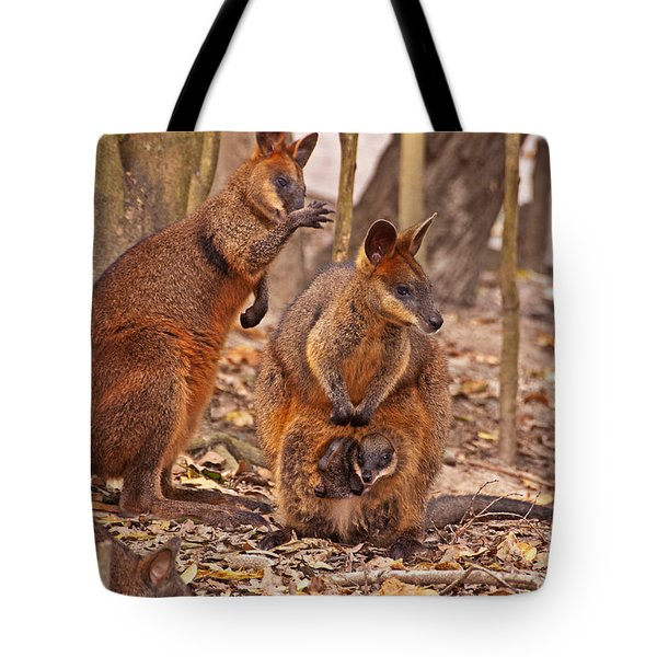 Looking Out From The Safety Of The Pouch Tote Bag by Bob and Nancy Kendrick