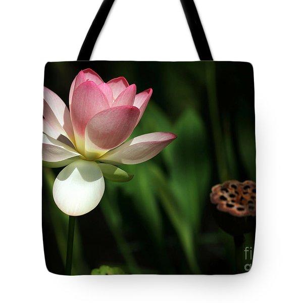 Lotus Opening To The Sun Tote Bag by Sabrina L Ryan