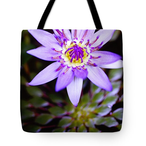 Lovely Lavendar Liliy Tote Bag by Kicka Witte