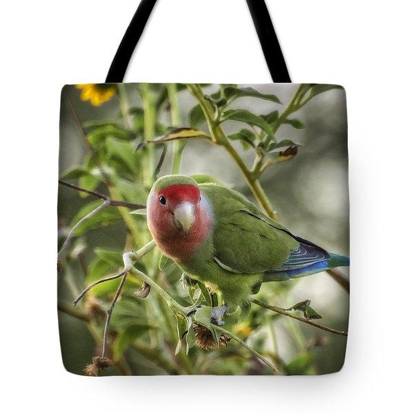 Lovely Little Lovebird Tote Bag by Saija  Lehtonen