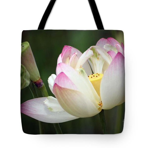 Lovely Lotus Tote Bag by Living Color Photography Lorraine Lynch