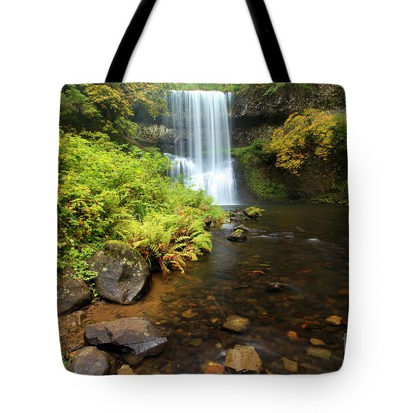 Lower South Falls Tote Bag by Adam Jewell