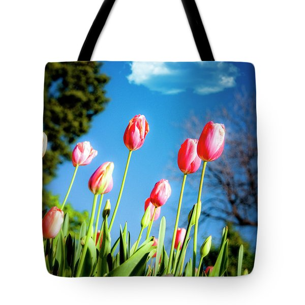 Lucy in the Sky Tote Bag by Tamyra Ayles