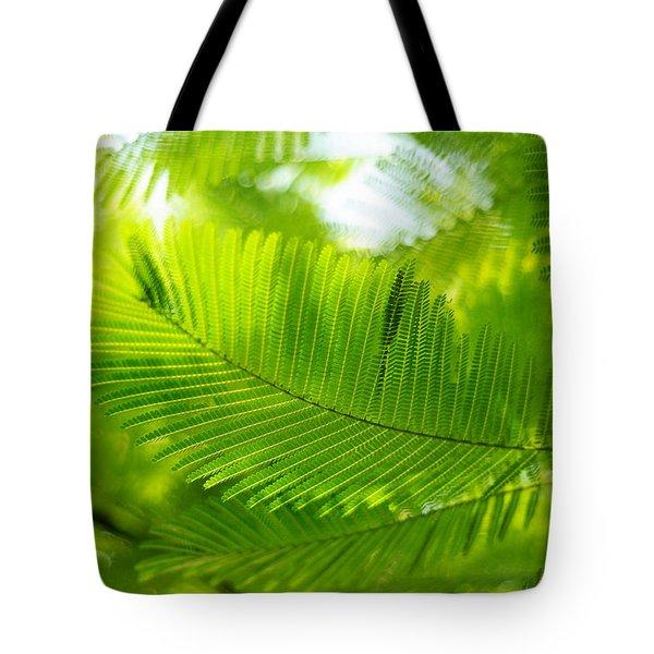 Luscious Green Light. Acacia Tree Tote Bag by Jenny Rainbow