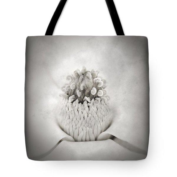 Magnolia 1 Tote Bag by Rich Franco