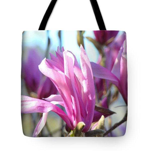 Magnolia Flowers Art Prints Pink Magnolia Tree Blossoms Tote Bag by Baslee Troutman