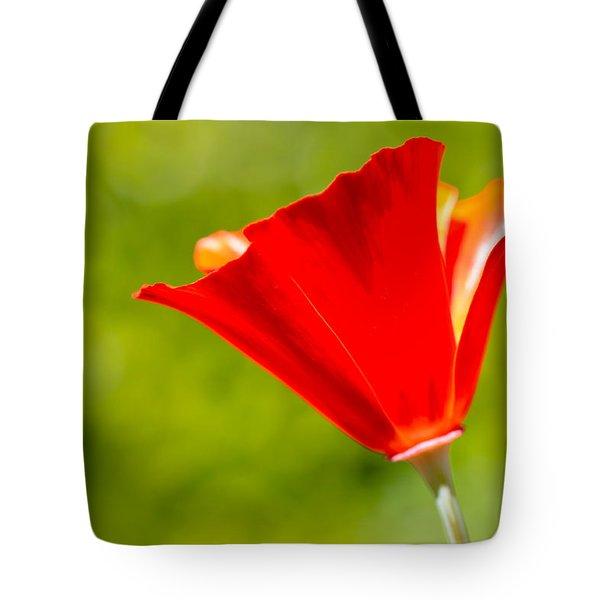 Mahogany California Poppy I Tote Bag by Heidi Smith