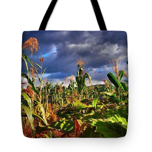 Maiz Tote Bag by Skip Hunt