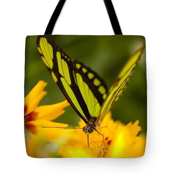 Malachite Butterfly On Flower Tote Bag by Craig Tuttle