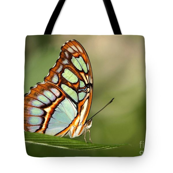 Malachite Butterfly Tote Bag by Sabrina L Ryan
