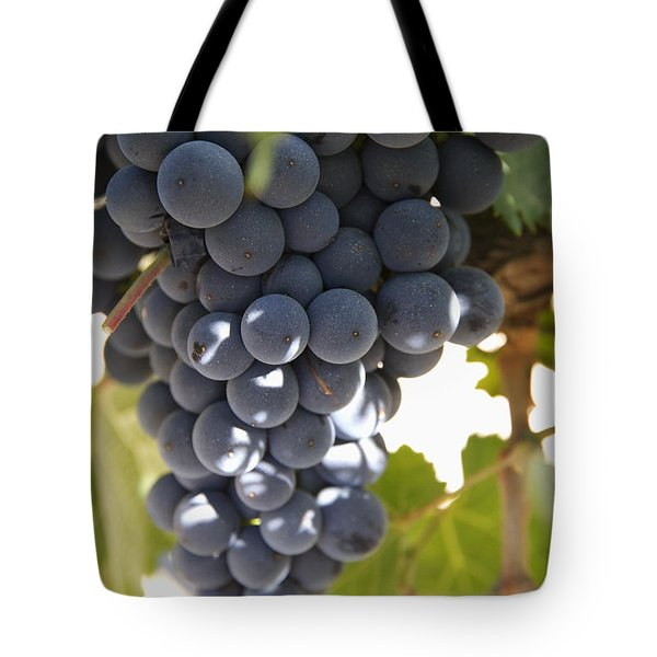 Malbec Grapes On The Vine Tote Bag by Peter Langer