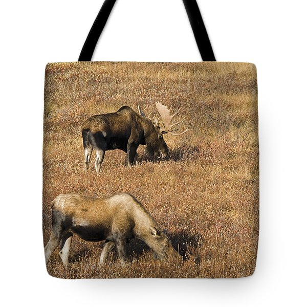 Male And Female Moose Alces Alces In Tote Bag by Philippe Widling
