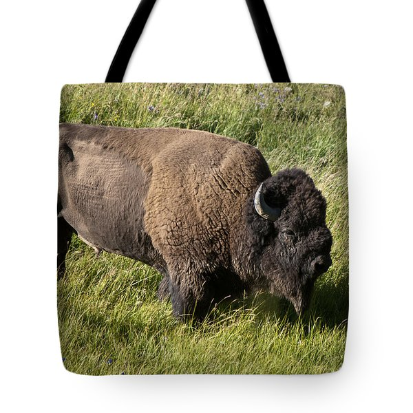 Male Bison Grazing  Tote Bag by Paul Cannon