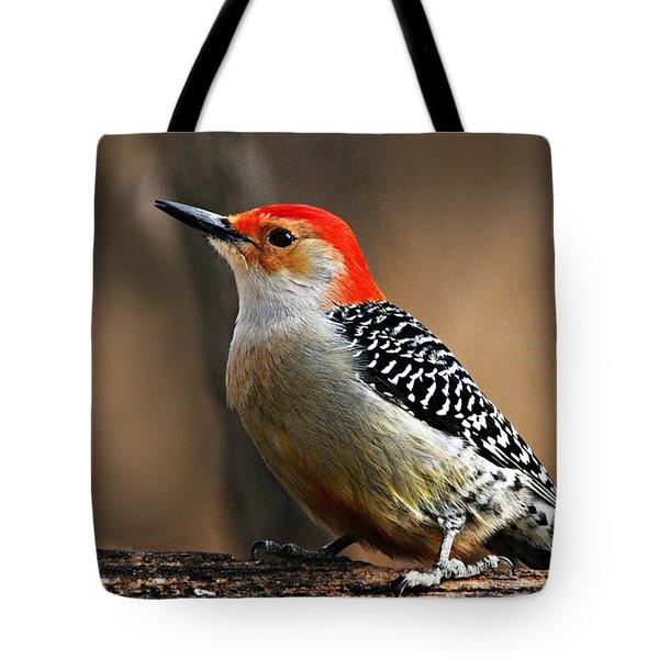 Male Red-bellied Woodpecker 4 Tote Bag by Larry Ricker