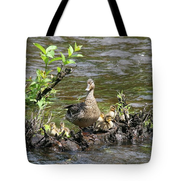 Mallard Duckling Rest  Tote Bag by Neal  Eslinger