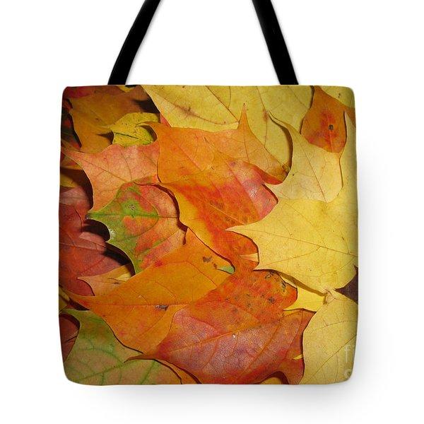 Maple Rainbow Tote Bag by Ausra Paulauskaite