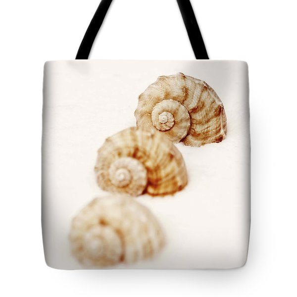 marine snails Tote Bag by Joana Kruse