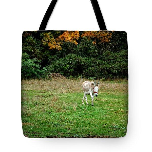 Marys Donkey Tote Bag by LeeAnn McLaneGoetz McLaneGoetzStudioLLCcom