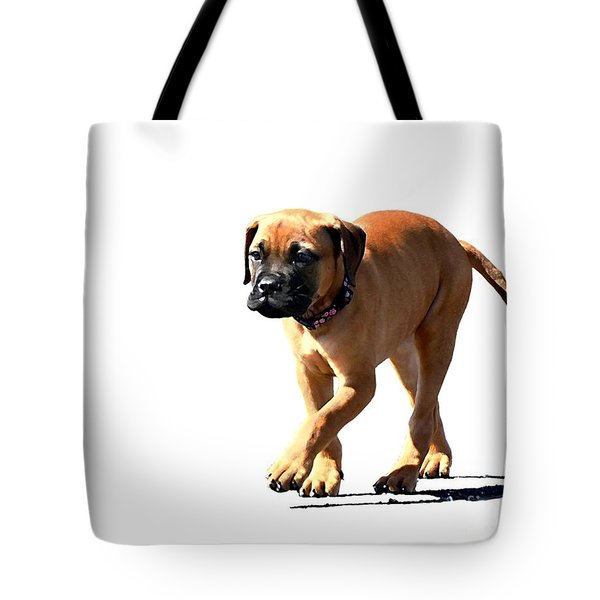 Me And My Shadow 5 Tote Bag by Dale   Ford