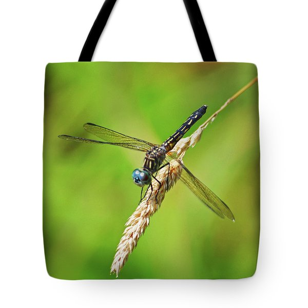 Tote Bag featuring the photograph Meadowhawk by Rodney Campbell