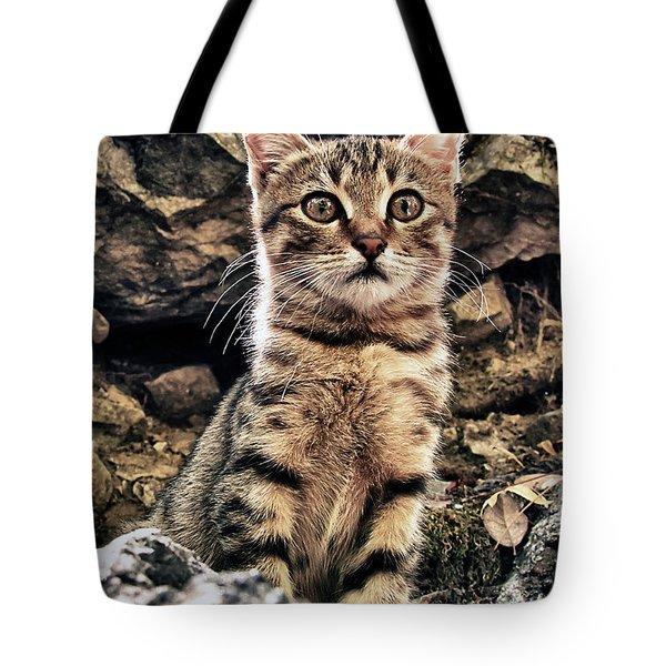 Mediterranean Wild Babe Cat Tote Bag by Stelios Kleanthous