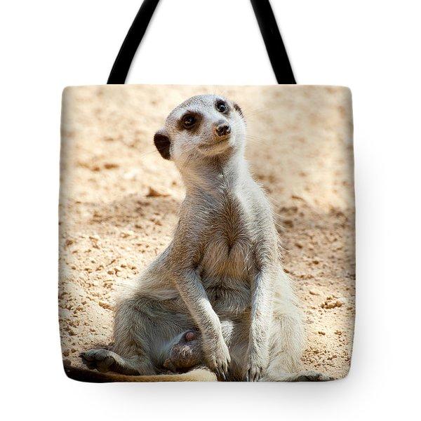 Meerkat Tote Bag by Fabrizio Troiani