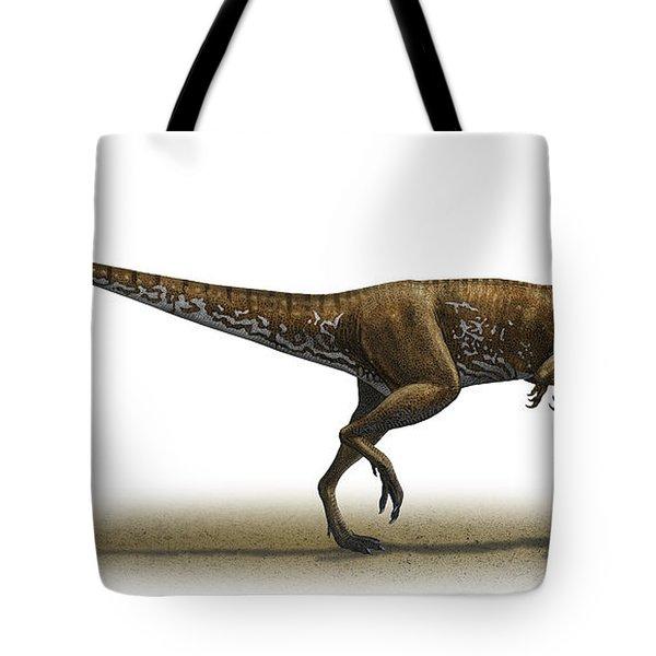 Megapnosaurus Kayentakatae Tote Bag by Sergey Krasovskiy