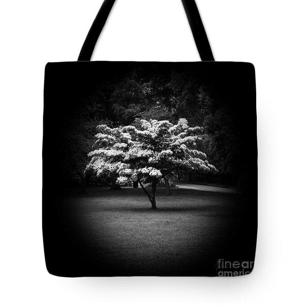 Memoir 2 Tote Bag by Luke Moore