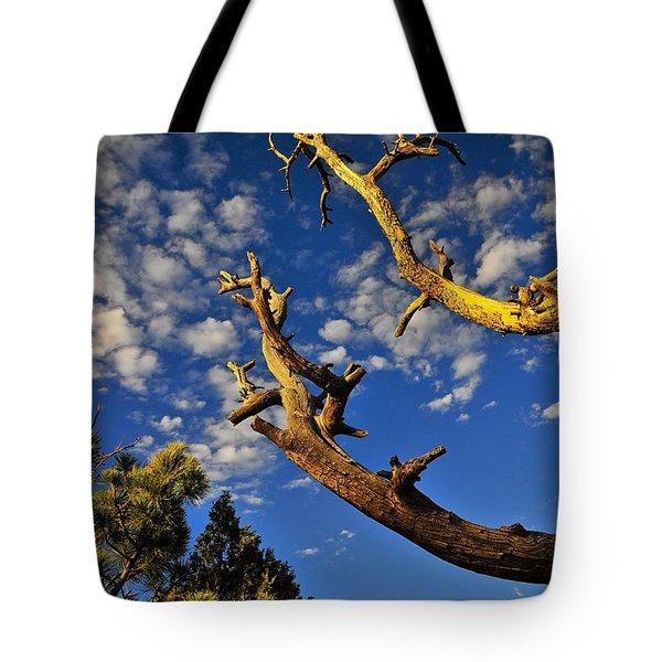 Mercy Tote Bag by Skip Hunt