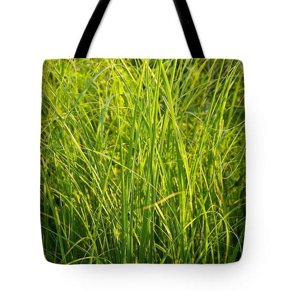 Midwest Prairie Grasses Tote Bag by Steve Gadomski