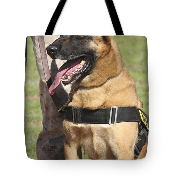 Military Working Dog Pants In The Hot Tote Bag by Stocktrek Images