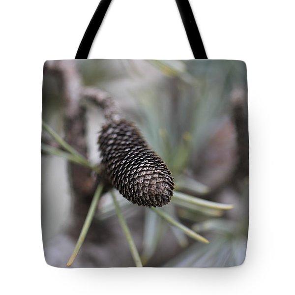 Miniature Pine Cone  Tote Bag by Douglas Barnard