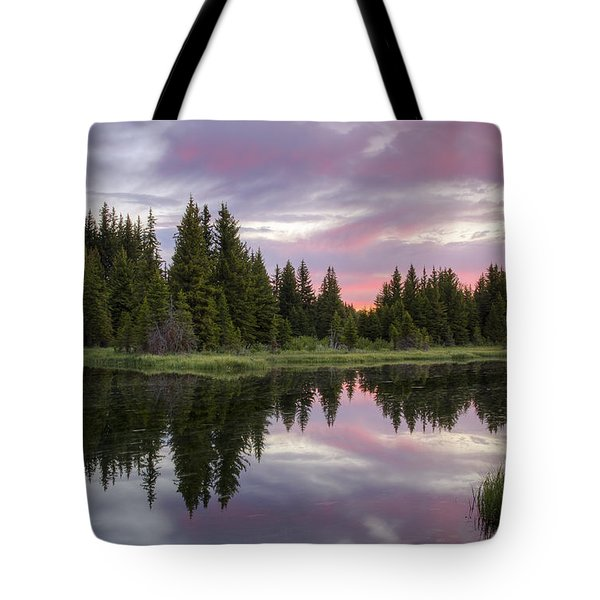 Mirrored Dawn Tote Bag by Idaho Scenic Images Linda Lantzy