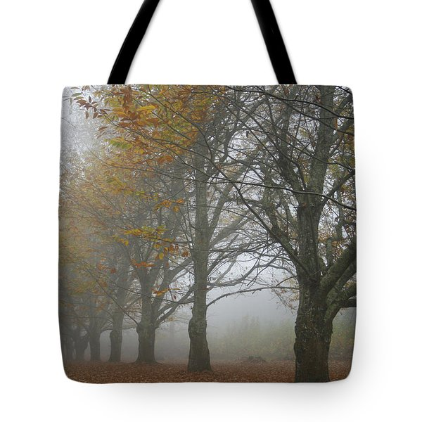 Misty November Tote Bag by Georgia Fowler