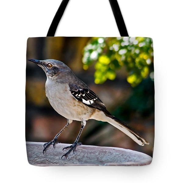 Mocking Bird Tote Bag by Robert Bales