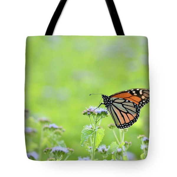 Monarch And Mist Tote Bag by JD Grimes