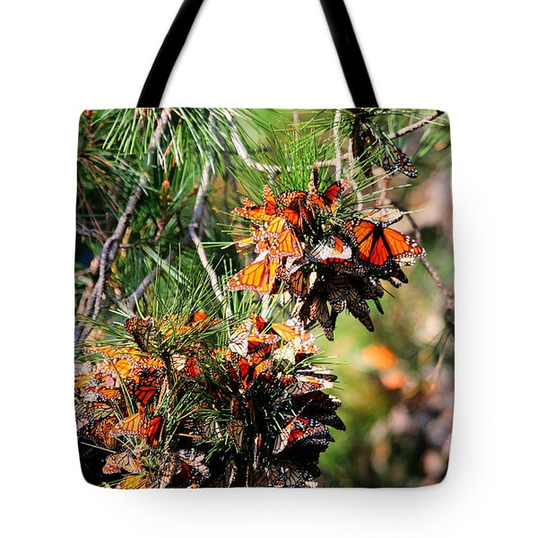 Monarch Butterfly Gathering Tote Bag by Tap  On Photo