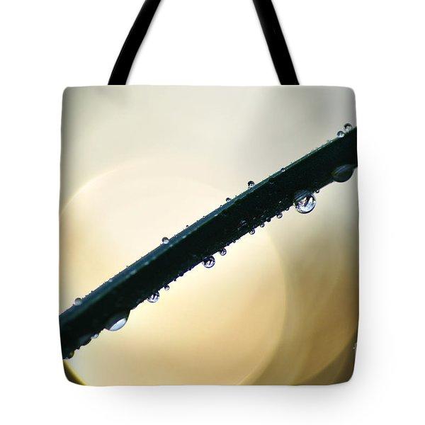 Moon Drops Tote Bag by Kaye Menner