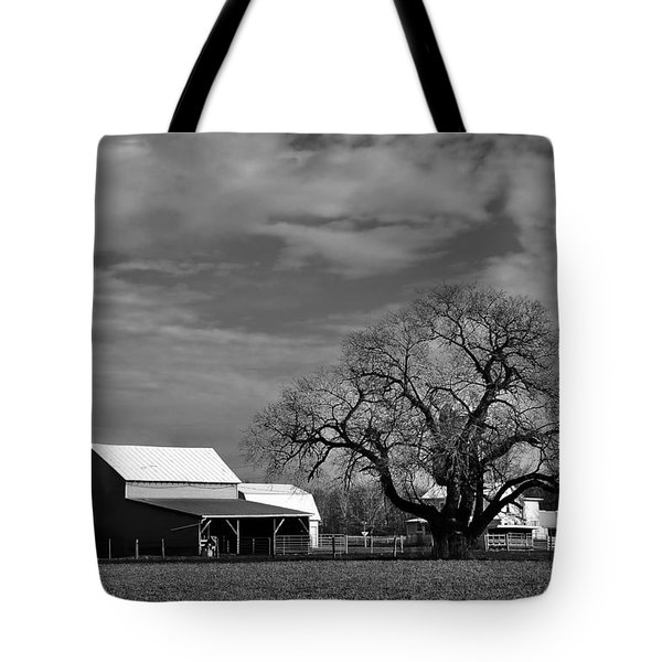 Moon Lit Farm Tote Bag by Todd Hostetter