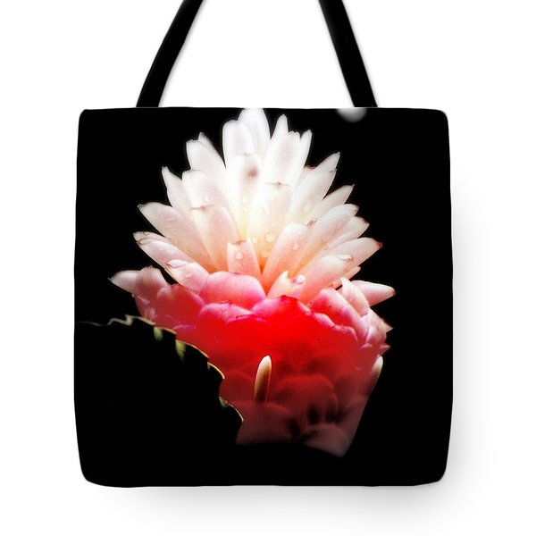 Moonlight Glow Tote Bag by KAREN WILES