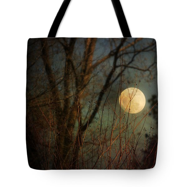 Moonrise Tote Bag by Jai Johnson