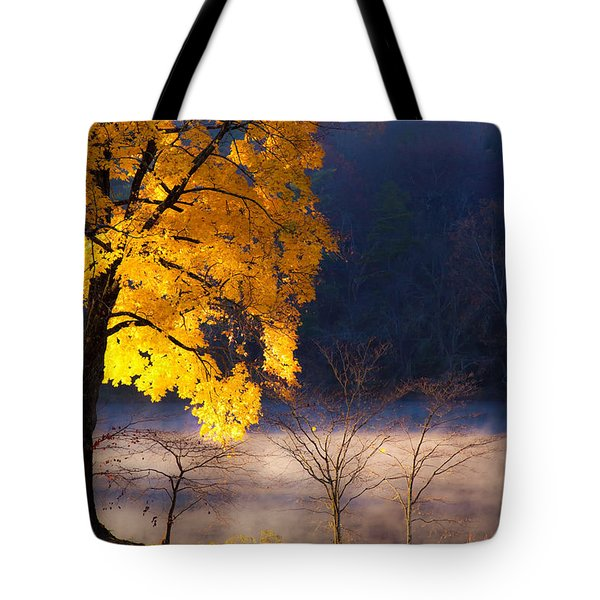 Morning Maple Ll Tote Bag by Rob Travis