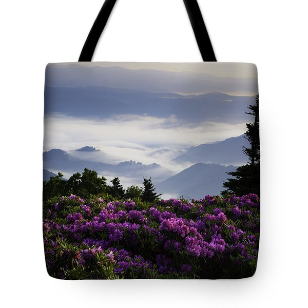 Morning on Grassy Ridge Bald Tote Bag by Rob Travis