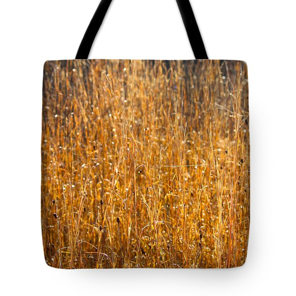 Morning Sunshine On The Marsh Tote Bag by Carol Groenen