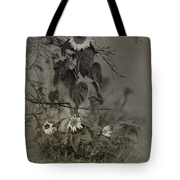 Mother And Child Reunion Tote Bag by Susan Capuano