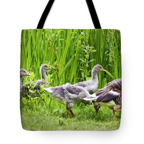 Mother Goose Leading Goslings Tote Bag by Simon Bratt Photography LRPS