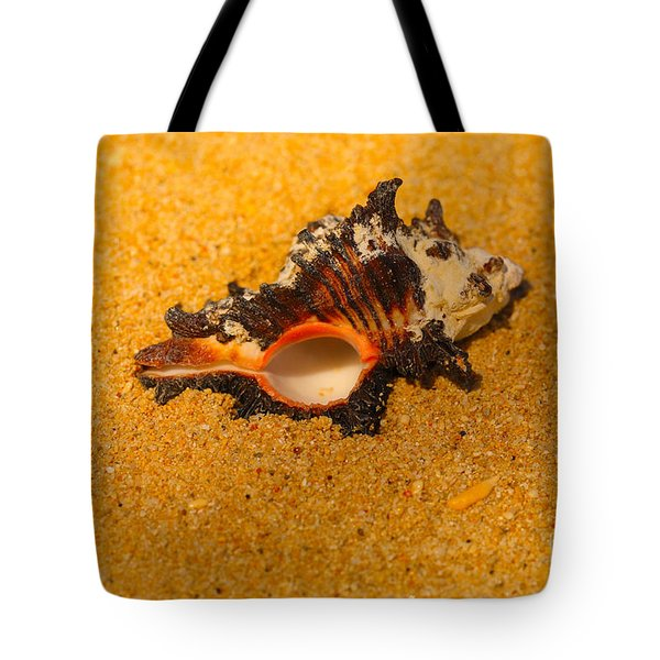 Murex Shell Tote Bag by Cheryl Young