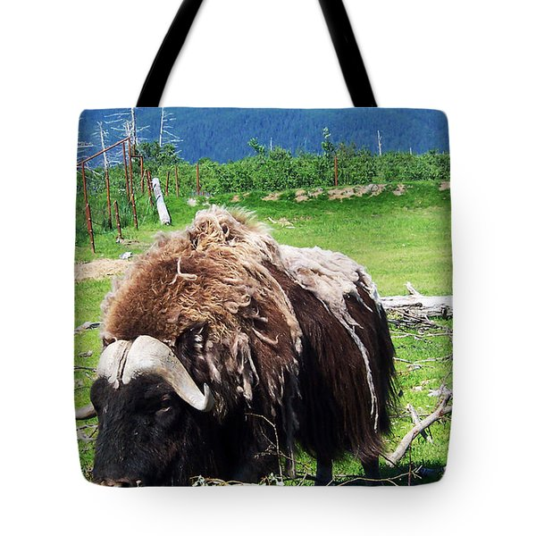 Musk Oxen Tote Bag by Aimee L Maher Photography and Art Visit ALMGallerydotcom