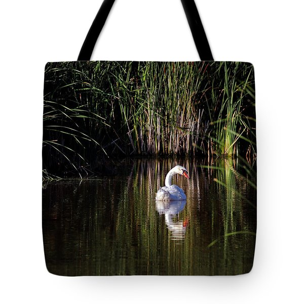 Mute Swan Tote Bag by Jim Nelson