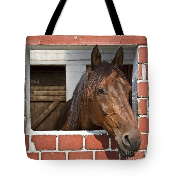My Friend Tote Bag by Heiko Koehrer-Wagner